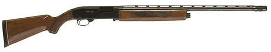 Ted Williams Shotgun Value
