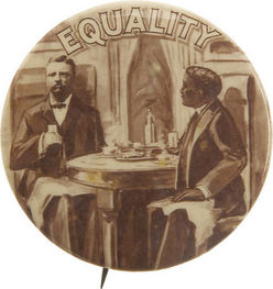 President Roosevelt Theodore Pin Equality Booker T