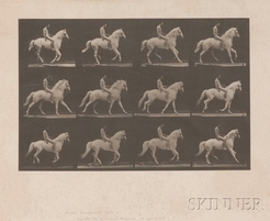 "Eadweard Muybridge (British/American, 1830 to 1904) ""Animal Locomotion, [collotype] plate 617"", taken from Animal Locomotion. An Electro-Photographic Investigation of Consecutive Phases of Animal Movements, Philadelphia, 1887, depicting twelve stop-action photographs of a nude man on a white horse."